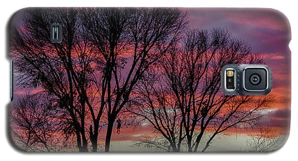 The Trees Know Sunset Galaxy S5 Case