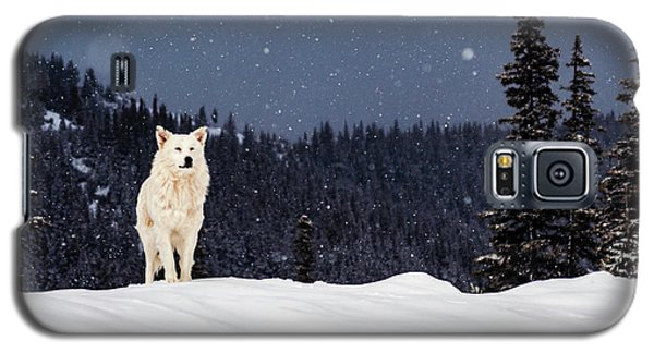 The Wolf Galaxy S5 Case