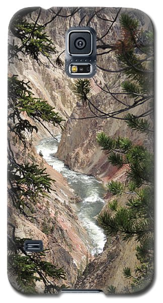 The Yellowstone River Seen Through The Pines Galaxy S5 Case