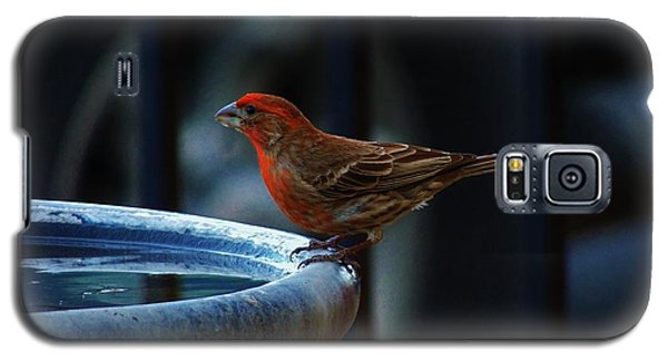 Thirsty Galaxy S5 Case