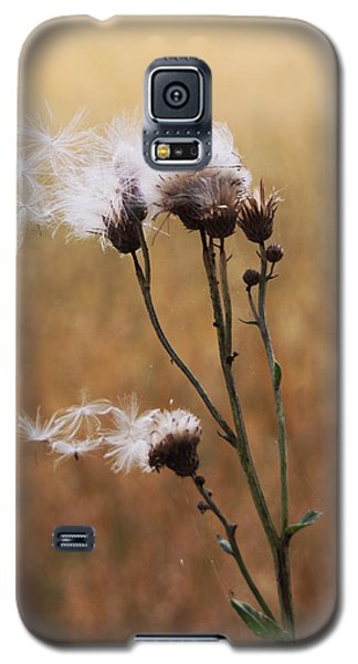 Thistle Down Galaxy S5 Case