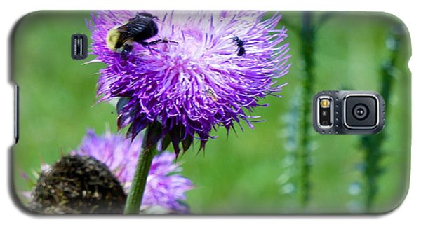 Thistle Visitors Galaxy S5 Case