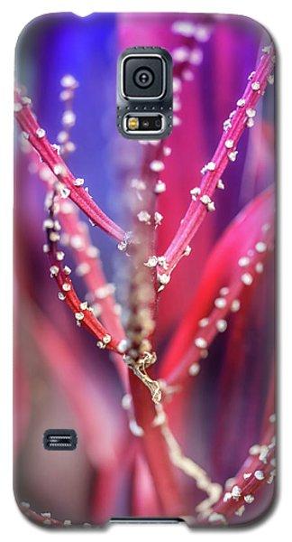 Thorns  Galaxy S5 Case