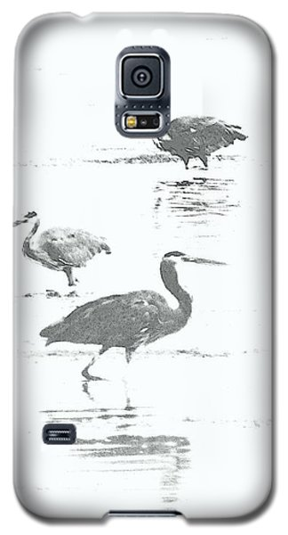 Three Blue Herons Galaxy S5 Case