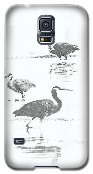 Three Blue Herons Galaxy S5 Case