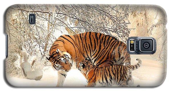 Tiger Family Galaxy S5 Case