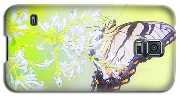 Tiger Swallowtail Butterfly On Privet Flowers Galaxy S5 Case