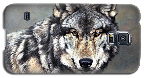 Timber Wolf By Alan M Hunt Galaxy S5 Case