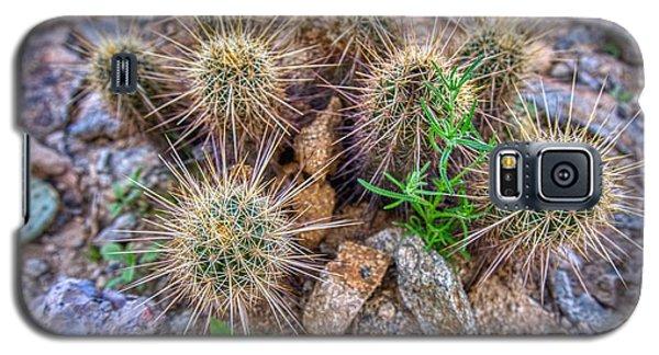 Tiny Cactus Galaxy S5 Case