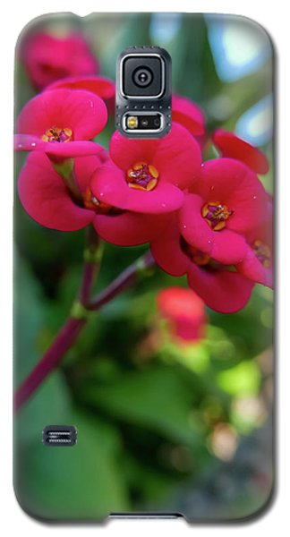 Tiny Red Flowers Galaxy S5 Case