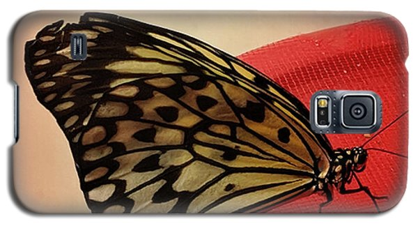 Torn Butterfly Galaxy S5 Case
