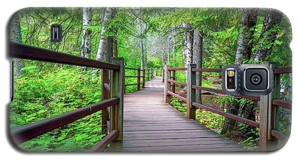 Trail At Gooseberry Falls Galaxy S5 Case