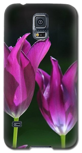 Translucent Tulips Galaxy S5 Case