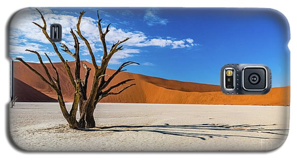 Tree And Shadow In Deadvlei, Namibia Galaxy S5 Case