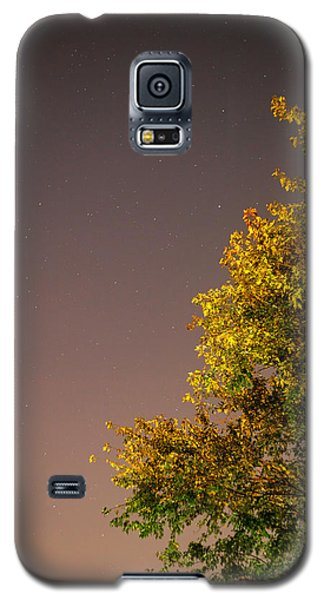Tree And Stars Galaxy S5 Case