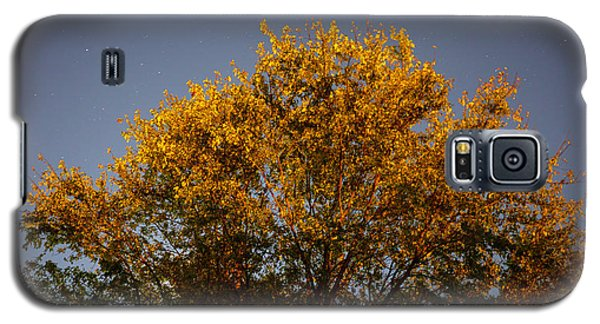 Tree And Stars Wide Galaxy S5 Case