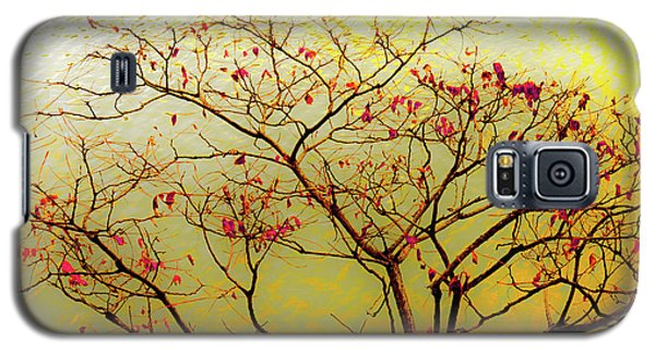 Tree And Water 2 Galaxy S5 Case