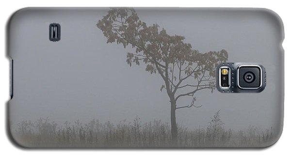 Tree In Fog Galaxy S5 Case