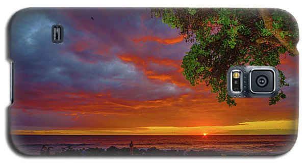 Tree  Sea And Sun Galaxy S5 Case