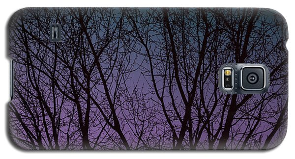 Tree Silhouette Against Blue And Purple Galaxy S5 Case