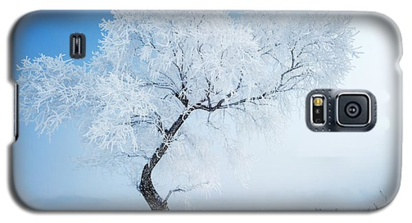 Icy Galaxy S5 Case - Trees In Frost And Landscape In Snow by Hxdyl