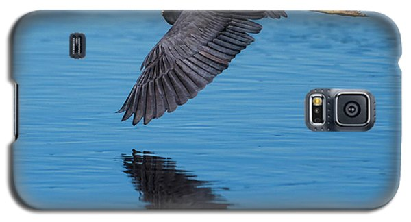 Tri-colored Heron In Flight Galaxy S5 Case