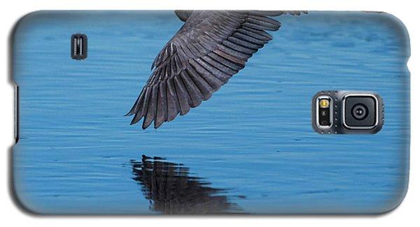 Tri-colored Heron In Flight Galaxy S5 Case