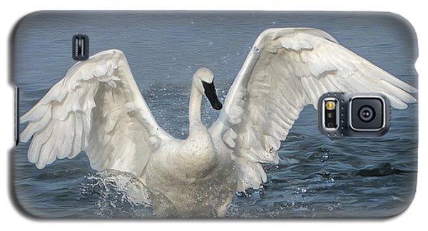 Trumpeter Swan Splash Galaxy S5 Case