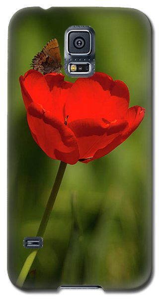 Tulip And Skipper Galaxy S5 Case