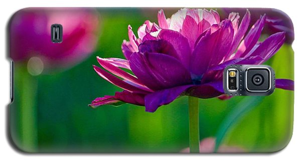 Tulips In Bloom Galaxy S5 Case