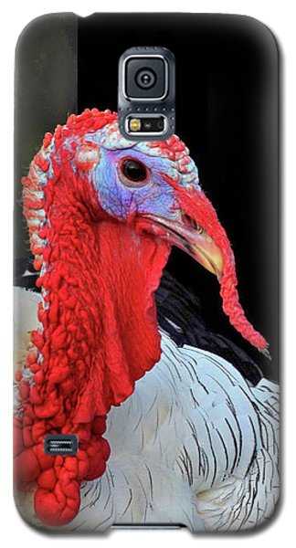 Turkey Tom Galaxy S5 Case