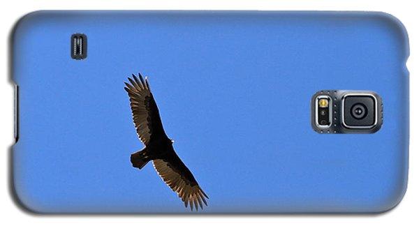Turkey Vulture Soaring Galaxy S5 Case