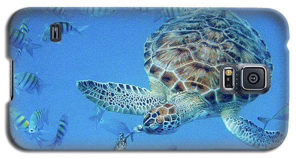 Turning Turtle Galaxy S5 Case