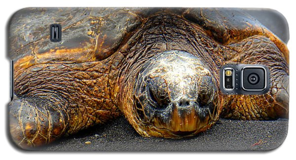 Turtle Rest Stop Galaxy S5 Case