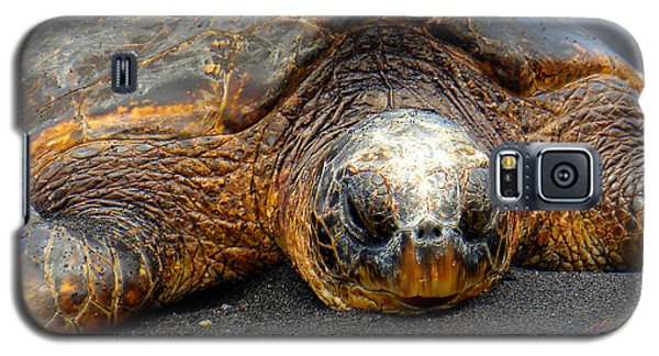 Turtle Rest Stop Galaxy S5 Case