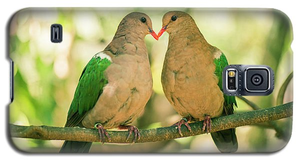 Two Colourful Doves Resting Outside On A Branch. Galaxy S5 Case