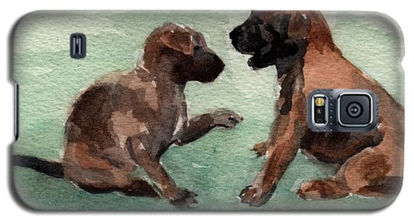 Two Malinois Puppies Galaxy S5 Case