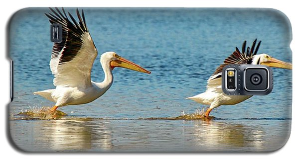 Two Pelicans Taking Off Galaxy S5 Case