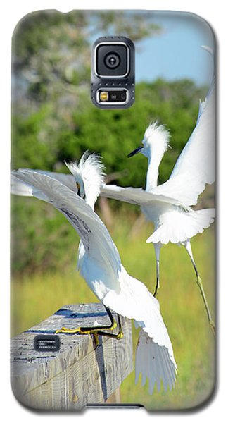 Two Snowy Egrets Lifting Off On Jekyll Island Galaxy S5 Case