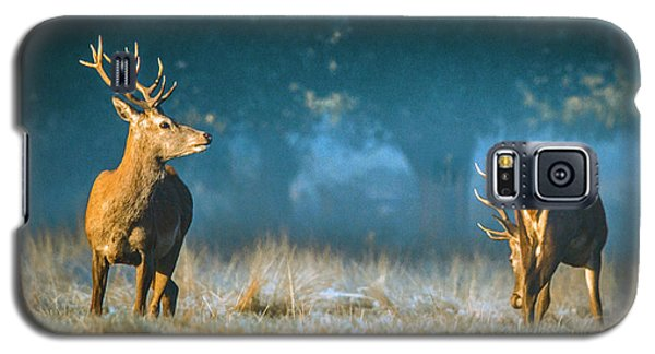 Two Stags Galaxy S5 Case