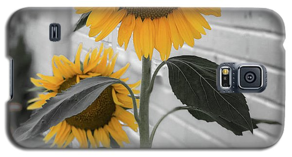 Urban Sunflower - Black And White Galaxy S5 Case
