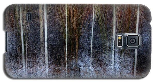 Veins Of Forest Galaxy S5 Case