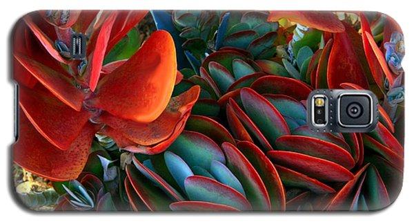Vivid Paddle-leaf Succulent Galaxy S5 Case