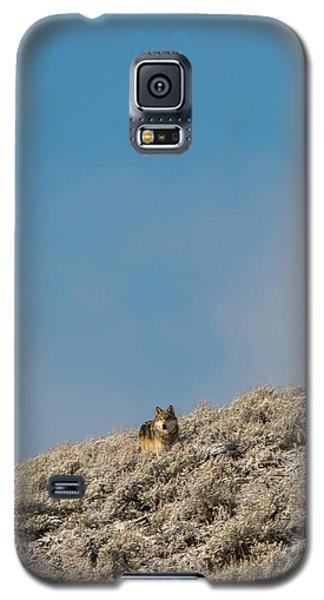 W24 Galaxy S5 Case