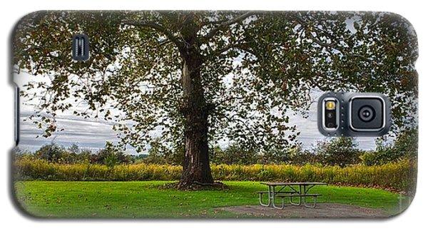 Walnut Woods Tree - 1 Galaxy S5 Case