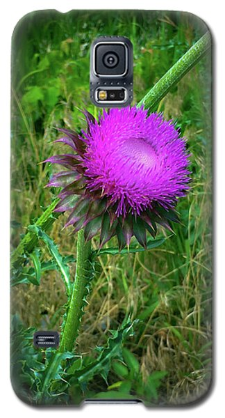 Wanna Be In Scotland Galaxy S5 Case