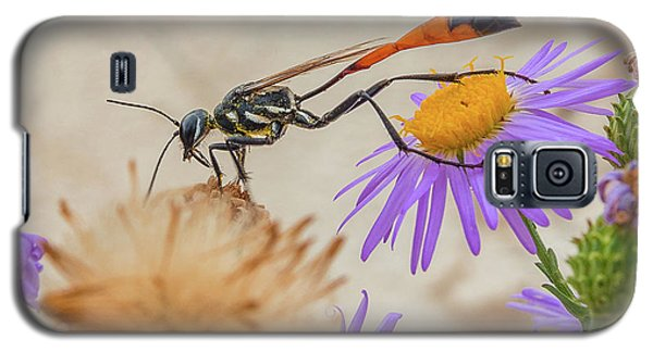 Wasp At White Sands Galaxy S5 Case