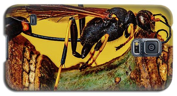 Wasp Just Had Enough Galaxy S5 Case