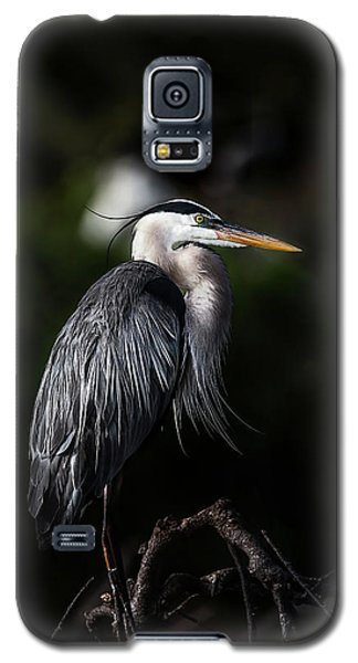 Watching And Waiting Galaxy S5 Case
