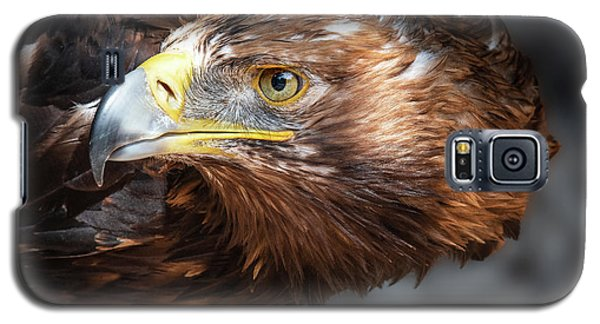 Watching Eagle Galaxy S5 Case